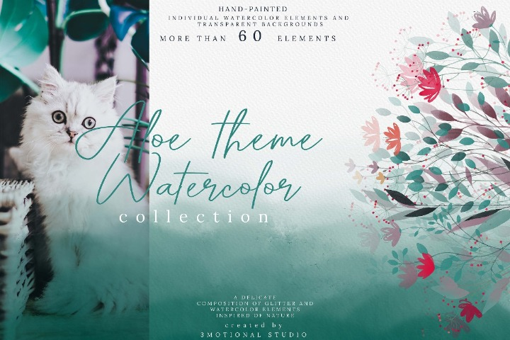 Aloe Theme Watercolor Card High Res PNG Photoshop