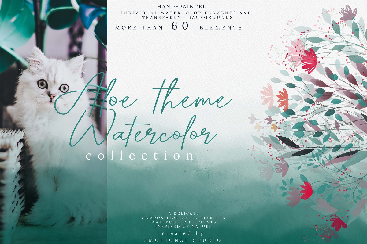 Aloe Theme Watercolor Collection High Res PNG