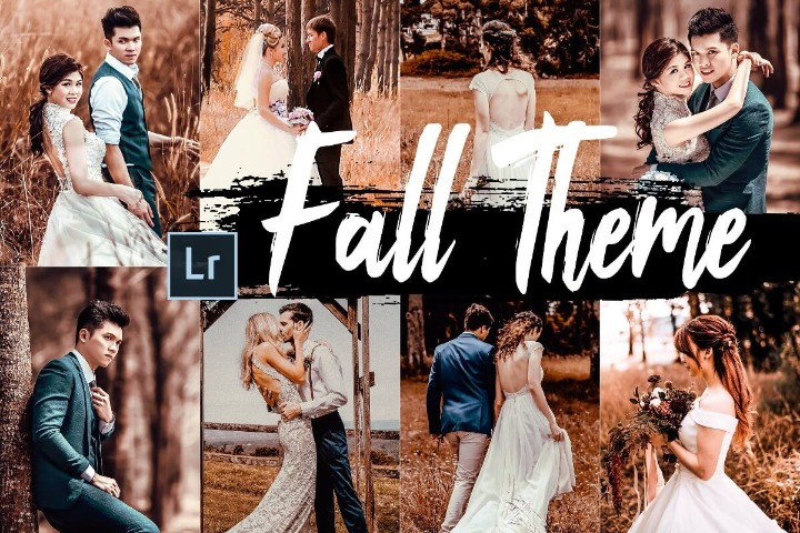 Fall Desktop Lightroom Presets and ACR preset
