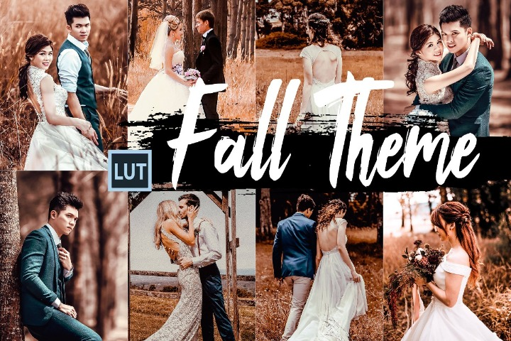 Fall LUT presets Photoshop Premiere AfterEffects