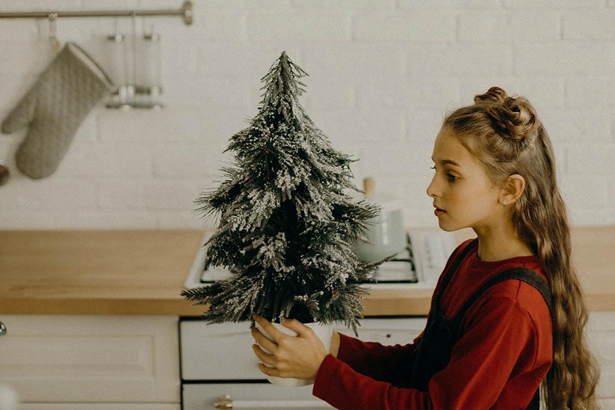 05 Merry Xmas Desktop Lightroom Presets and ACR preset, Christmas photography portrait LR theme adobe editing Instagram lifestyle