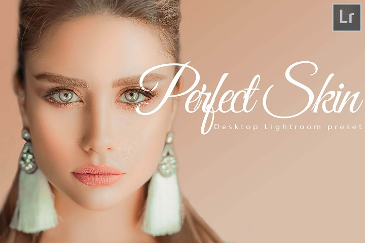 18 Perfect Skin Desktop Lightroom Presets and ACR preset, skin retouch LR theme Adobe photographer modern editing blogger lifestyle