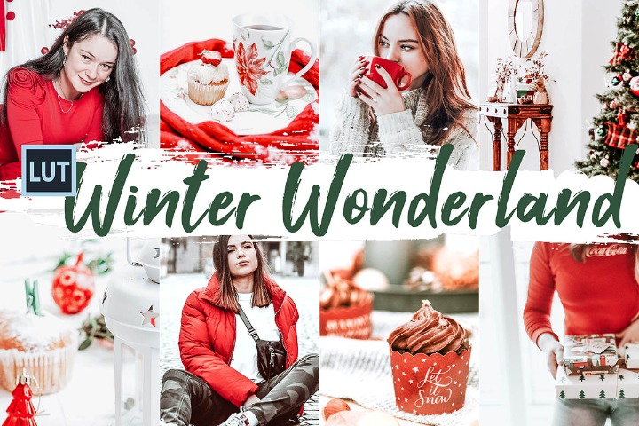 Winter Wonderland LUT Presets Color Correction Editor, Photoshop, Lightroom
