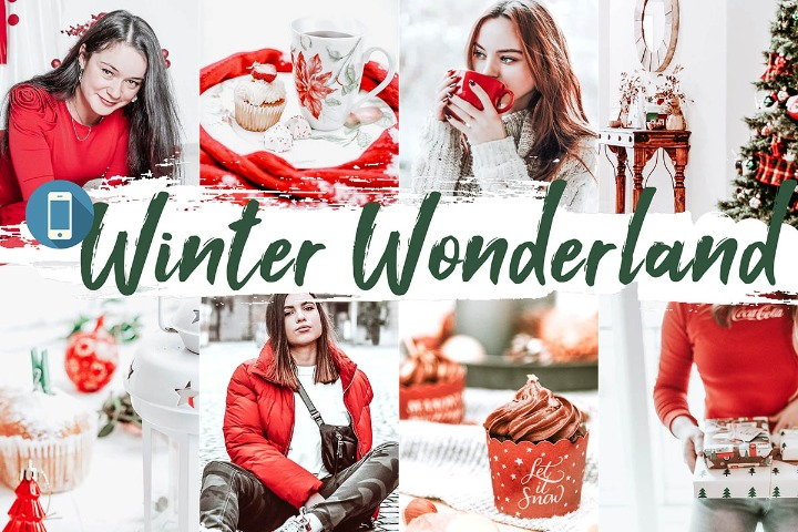 Winter Wonderland Mobile Lightroom Presets Color Correction Editor, Photoshop, Lightroom