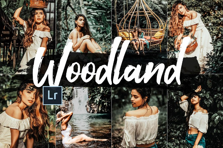 Woodland Lightroom Presets and ACR preset, Mobile Presets, Photoshop Actions, Photo Filter, Video Luts Theme, Photo tone Color Correction