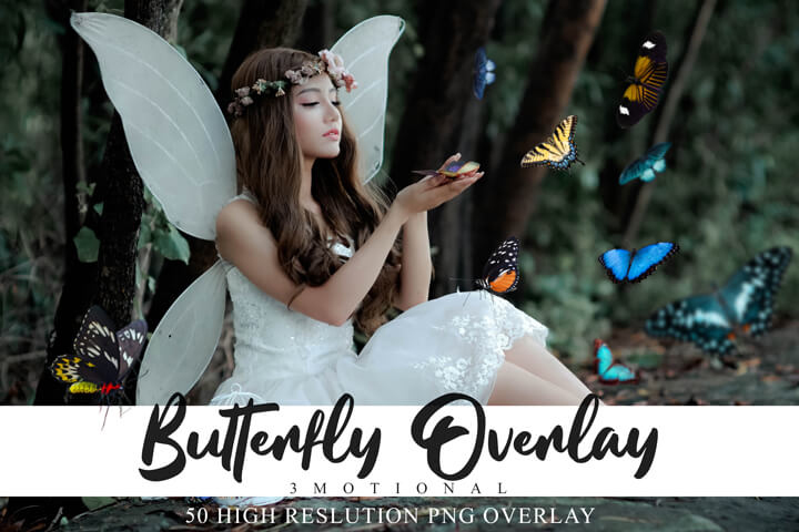 60 Butterflies Photo Overlays, Natural flying Colorful Butterflies clip art, Photography Overlays, Photoshop png file, Spring summer overlay