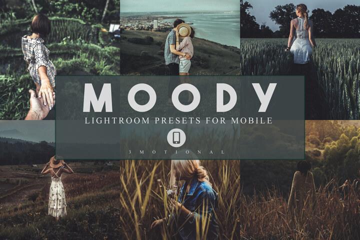 14 Moody Mobile Lightroom Presets, Instagram Blogger edit Photo Filter Outdoor, Indoor &Forest Preset travel photographer influencer preset