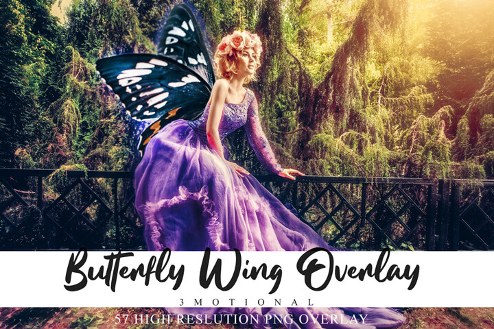 Colorful Butterfly Wing Overlays, Natural Flying wing, Spring magic effects, Summer Clip Art, Fantasy Image photography, Outdoor png file
