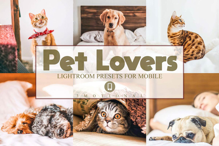 Pet Lovers Mobile Lightroom Presets, Dog cat bright clean editing photo effect, Animal portrait Instagram blogger, outdoor indoor Filters