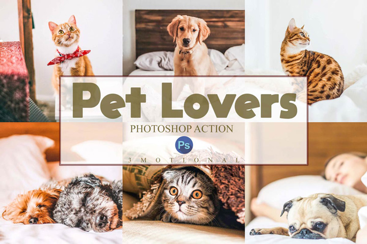 14 Pet Lovers Photoshop Actions, ACR and LUT Presets Dog cat editing photo effect, Animal portrait Instagram blogger, outdoor indoor Filters