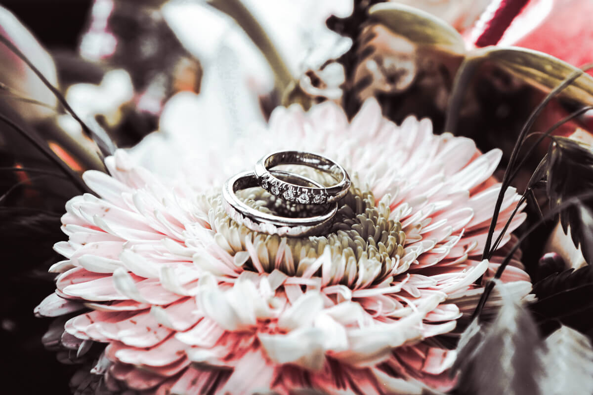 8 Wedding Mood Lightroom Presets, Mobile Presets, mobile Lightroom, photoshop actions tan, air camera raw amp file, out video photo filter Bridegroom vintage photography, Moody Outdoor Portrait Photo filter Preset, Instagram effect, marriage