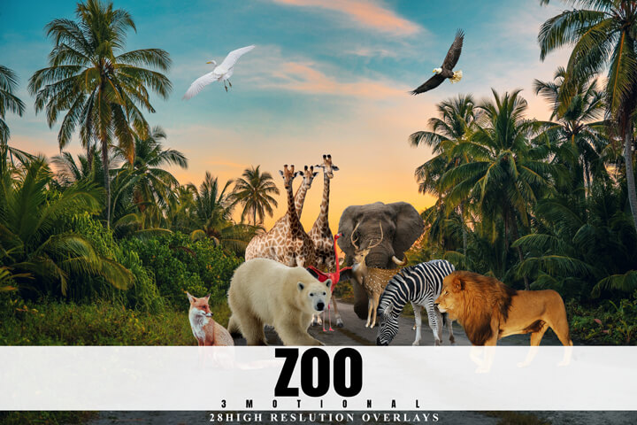 28 Zoo Overlays, Realistic Wild Animal Photoshop Overlay, High-Quality Photography transparent PNG Images, Digital Background, easy to use