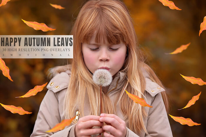 30 Happy Autumn Leaves Overlays, falling romantic realistic orange texture, transparent png file, digital instant download, easy to use