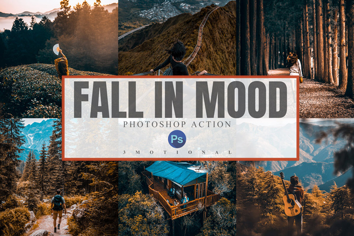 11 Fall in Mood Lightroom Presets, Mobile presets, Mobile lightroom Preset, Xmp acr cameraraw, photoshop action, color corection, lut video filter