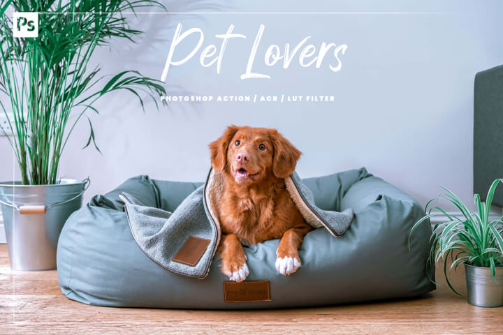 10 Pet Lovers Photoshop, Action, Lut Filter, Acr Presets, Dog and Cat Photo Editing Filter for Instagram, Animal Preset for Bloggers