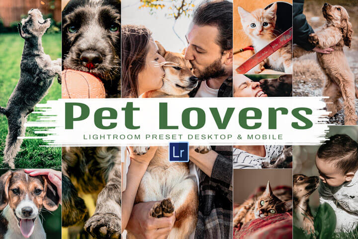 10 Pet Lovers Mobile and Desktop Lightroom Presets, dog and cat photo editing filter for Instagram, animal theme for bloggers, easy to use