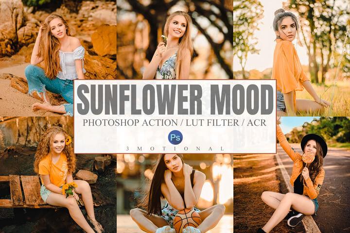 Sunflower Mood Lightroom Presets Lightroom Mobile Presets Photoshop Action