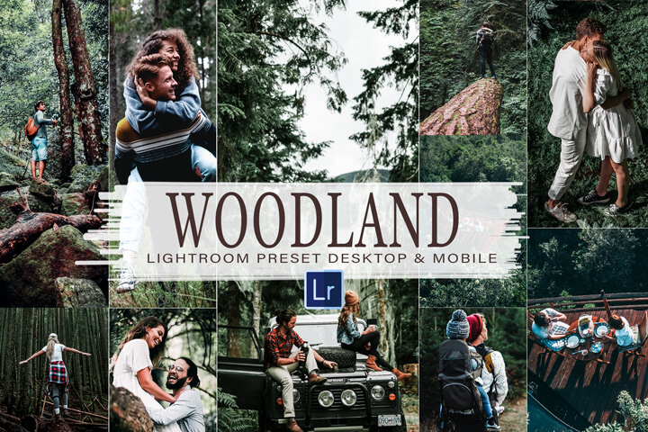 10 Woodland Mobile and Desktop Lightroom Presets, cinematic theme for Photo editing, vibrant Filter, Instagram influencer, outdoor style Photoshop Action, ACR CAmera Raw, LUT Cube File