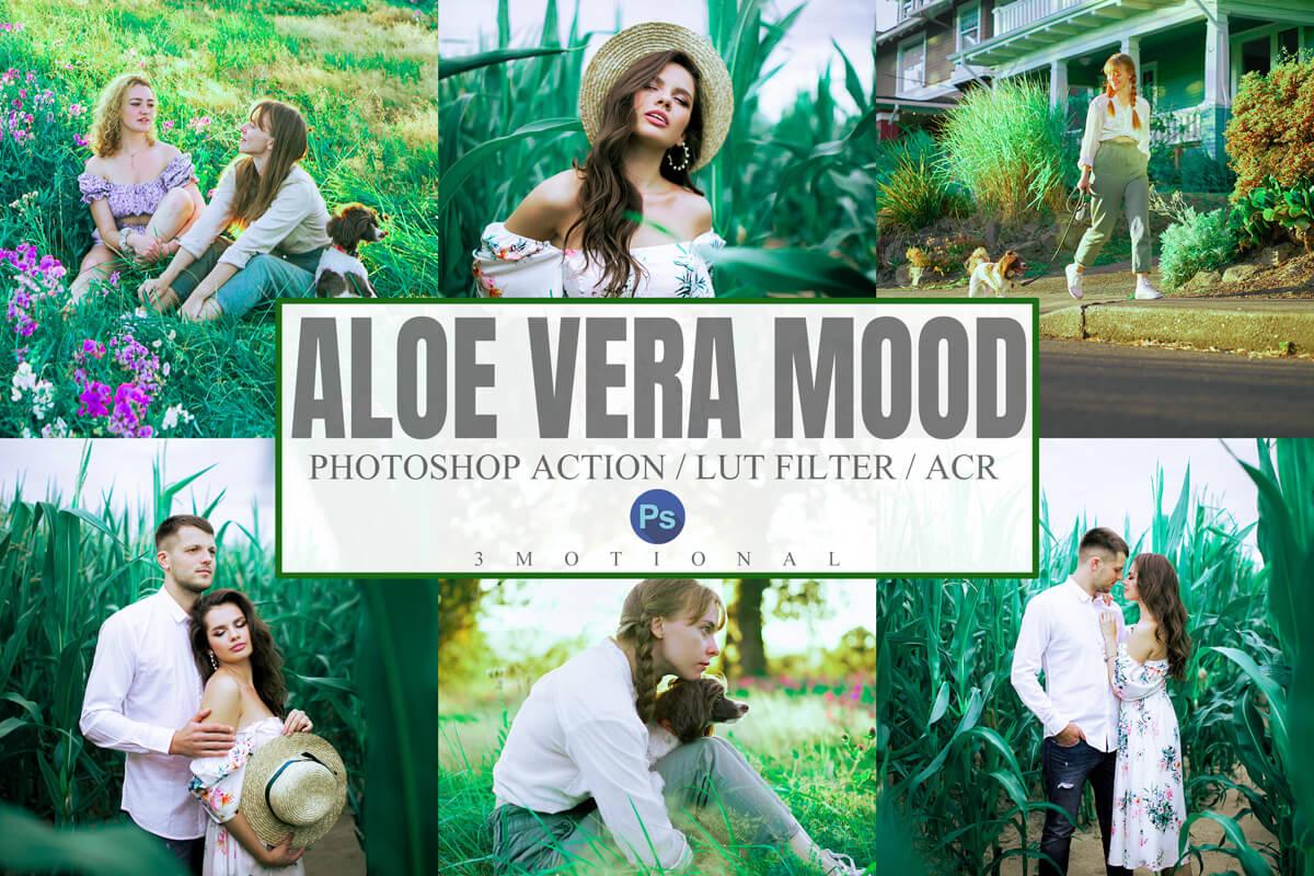 Aloe Vera Mood Lightroom Presets Lightroom Mobile Presets Photoshop Action