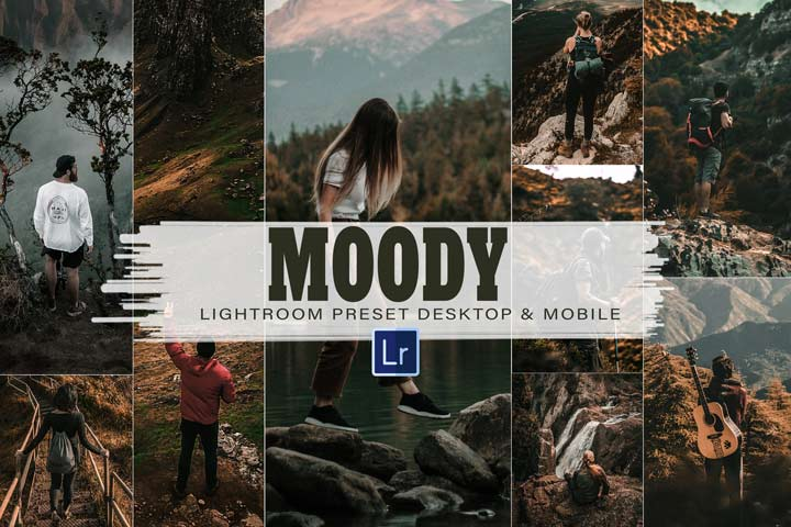 10 Moody Mobile and Desktop Lightroom Presets, dark rich cinematic professional theme, vibrance lifestyle for Instagram blogger