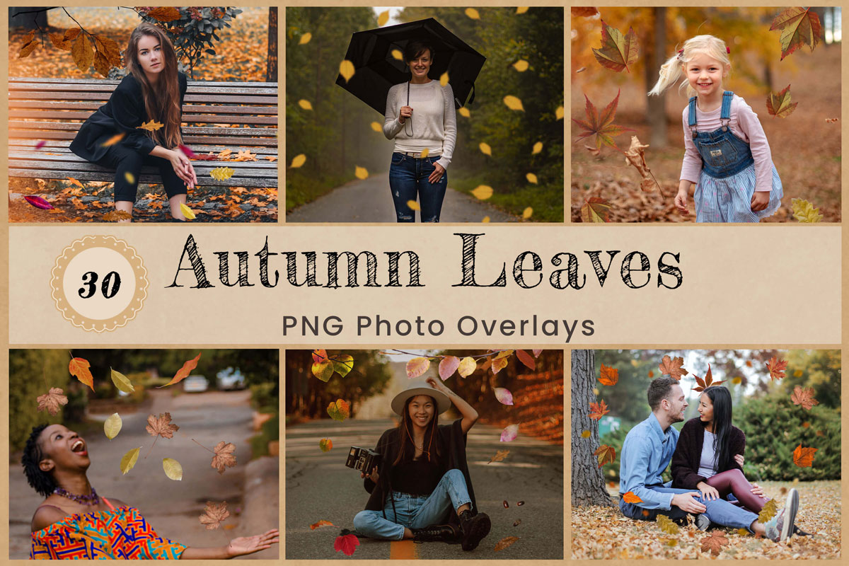 Autumn Leaves Digital Overlays Backdrops Backgrounds Photoshop Editing PNG Real Nature Red Yellow Orange Falling Leaf Holiday Photography